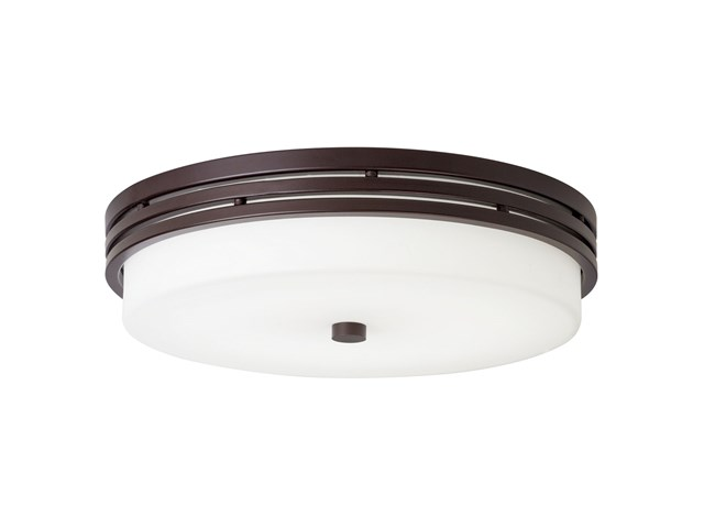 "Ceiling Space 14"" LED Flush Mount Olde Bronze®"